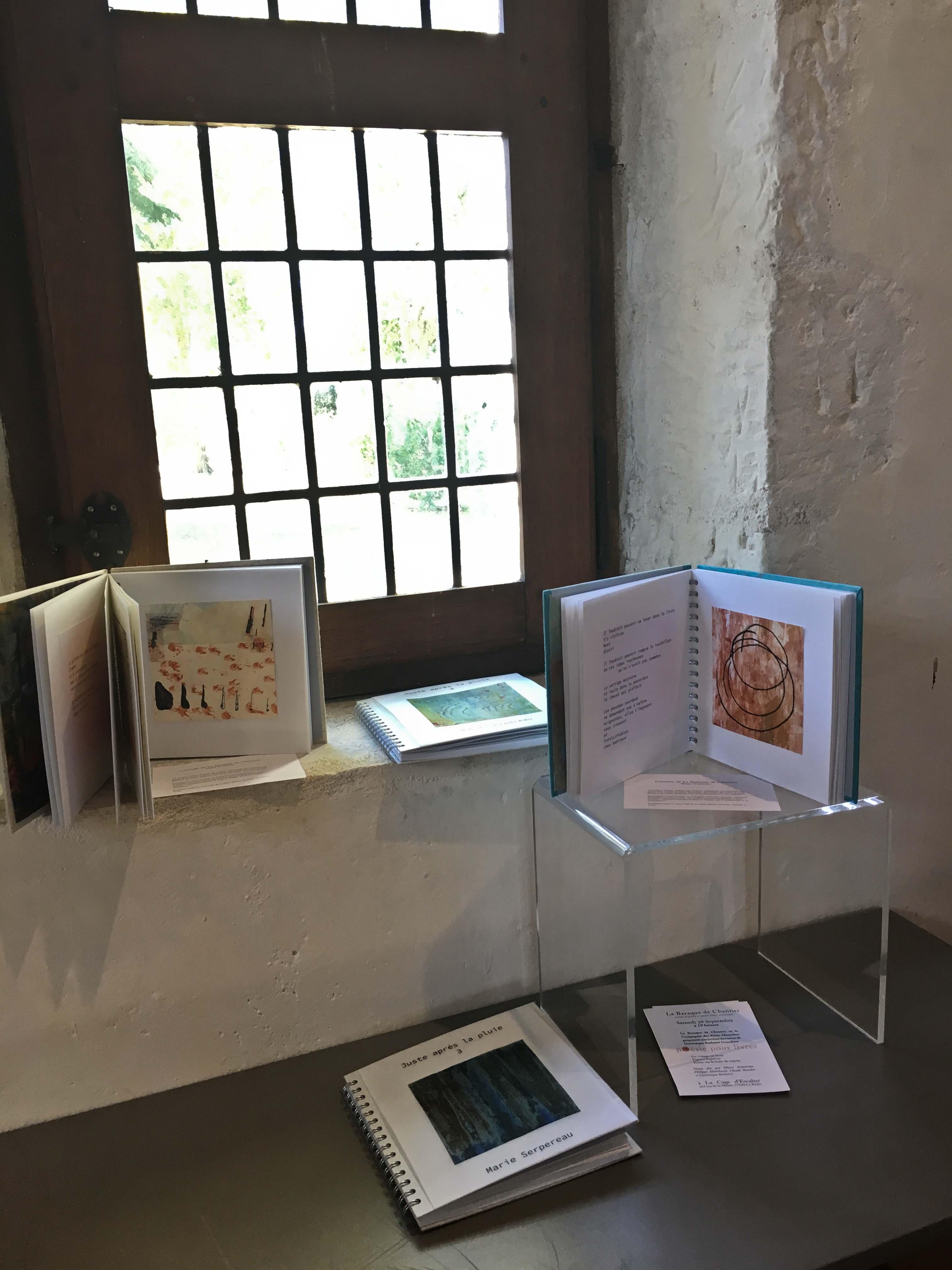 photos de l'exposition de livres