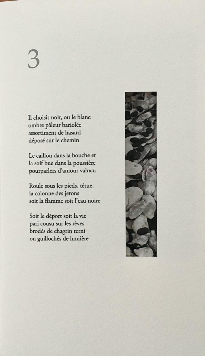 photos du livre L'ombre bleuie
